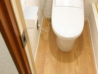 佐倉市上座 トイレ交換 床の張替 ドア交換